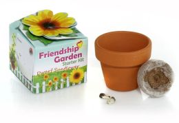 Friendship Garden Starter Kit Dwarf Sunflower