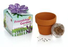 Friendship Garden Starter Kit Lavender