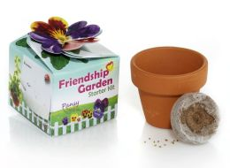Friendship Garden Starter Kit Pansy