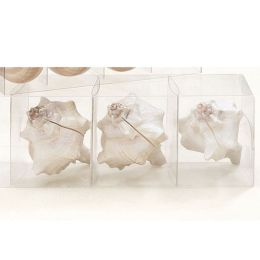 Shell Placecard Holders (set of 4) - Crown Shell