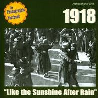 1918: Like The Sunshine After Rain