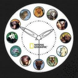 National Geographic Branded Products NGAC National Geographic Animal Clock
