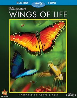 Wings of Life