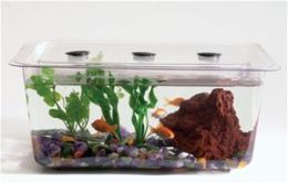 Hubbard Scientific 9435 1.5 Gal Study Aquaria Terraria Tank Cover