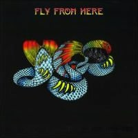 Fly from Here [Box Set] [CD/DVD] [Bonus LP]