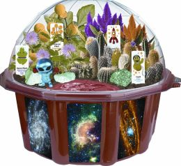 Outer Space Adventure Dome Terrariums
