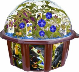 Rainforest Biosphere Dome Terrariums