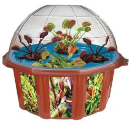Hydrooponic Fly Trap