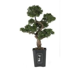 Silk Cedar Bonsai Plant in Green