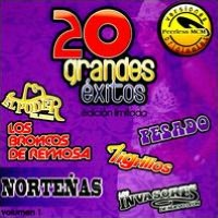 20 Grandes Exitos: Nortenas, Vol. 1