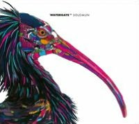 Watergate, Vol. 11: Solomun