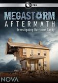 Video/DVD. Title: NOVA: Megastorm Aftermath