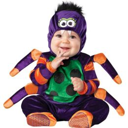 Itsy Bitsy Spider Infant / Toddler Costume: 18 Months/2T