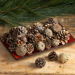 Gold-Tipped Pinecones