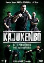 Kajukenbo: Belt Promotion - White Belt to Brown Belt