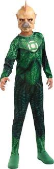 Green Lantern - Tomar-Re Child Costume: Large