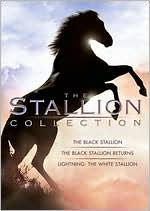 Stallion Collection