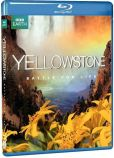 Video/DVD. Title: Yellowstone: Battle for Life