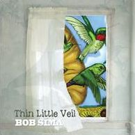 Thin Little Veil