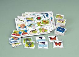 Childcraft Grade 2 Science Lotto 4 Games Set