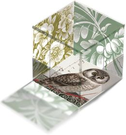 Green Transferware Glass Cube Owl Paperweight