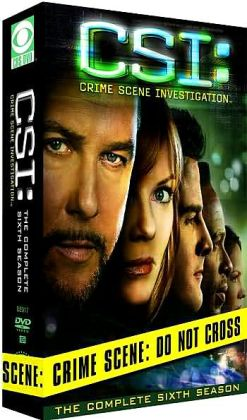 CSI - Crime Scene Investigation, Season 6