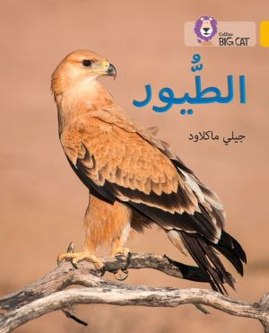 Collins Big Cat Arabic - Birds: Level 9