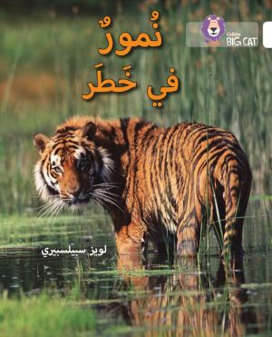 Collins Big Cat Arabic - Tigers in Danger: Level 10