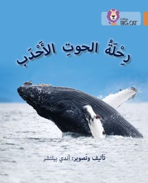 Collins Big Cat Arabic - Journey of Humpback Whales: Level 12