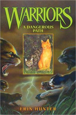 A Dangerous Path (Warriors Series #5)