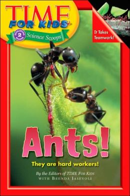 Ants! (Time for Kids Series)