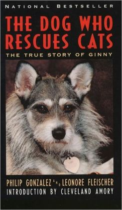 Dog Who Rescues Cats: The True Story of Ginny
