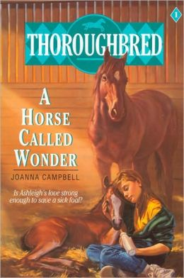 Horse Called Wonder (Thoroughbred Series #1)
