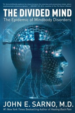 Divided Mind: The Epidemic of Mindbody Disorders