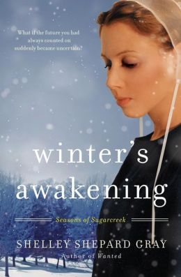 Winter's Awakening (Seasons of Sugarcreek Series #1)