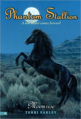 Moonrise (Phantom Stallion Series #14)