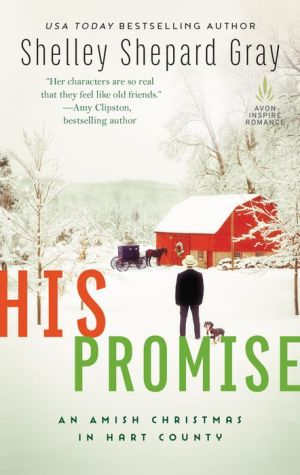 His Promise: An Amish Christmas in Hart County