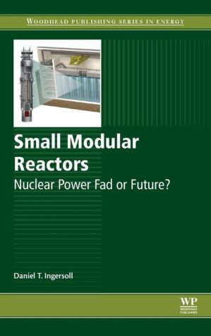 Small Modular Reactors: Nuclear Power Fad or Future?