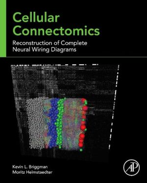 Cellular Connectomics: Reconstruction of Complete Neural Wiring Diagrams