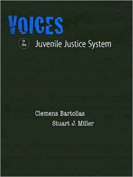 Voices in the Juvenile Justice System