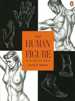 Human Figure: An Anatomy for Artists