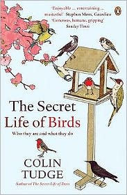 Secret Life of Birds: Who They Are and What They Do