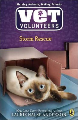 Storm Rescue (Vet Volunteers Series #6)