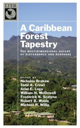 A Caribbean Forest Tapestry: The Multidimensional Nature of Disturbance and Response