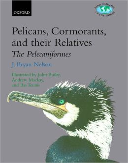 Pelicans, Cormorants, and Their Allies: Pelecaniformes