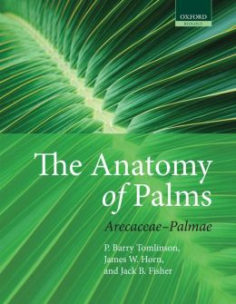 The Anatomy of Palms: Arecaceae - Palmae