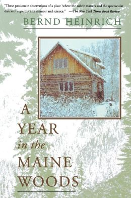 A Year in the Maine Woods