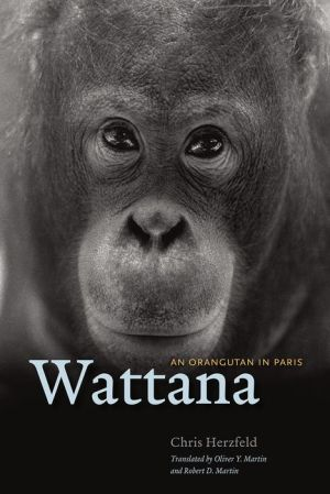 Wattana: An Orangutan in Paris