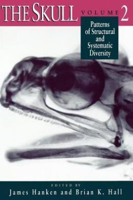 Patterns of Structural and Systematic Diversity