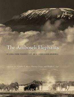 The Amboseli Elephants: A Long-Term Perspective on a Long-Lived Mammal
